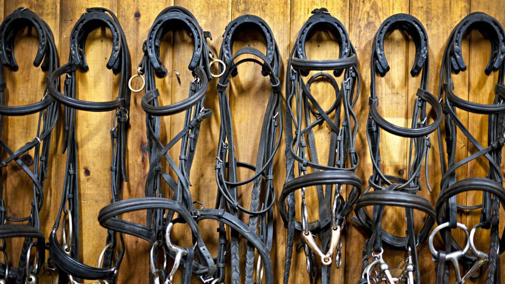 Find a Tack Store